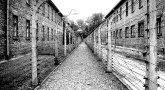 Story: A Kosher Pesach in Auschwitz Camp