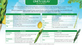 HOW TO CHOOSE ONE'S LULAV
