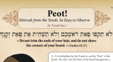 Peot - Your Printable Practical Guide