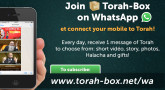 Join Torah-Box on WhatsApp!