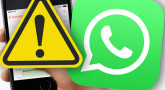 Watch out! Torah-Box WhatsApp Group switches its phone number