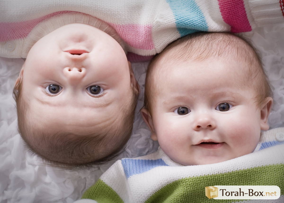 Five twins were born in the Czech Republic for the first time